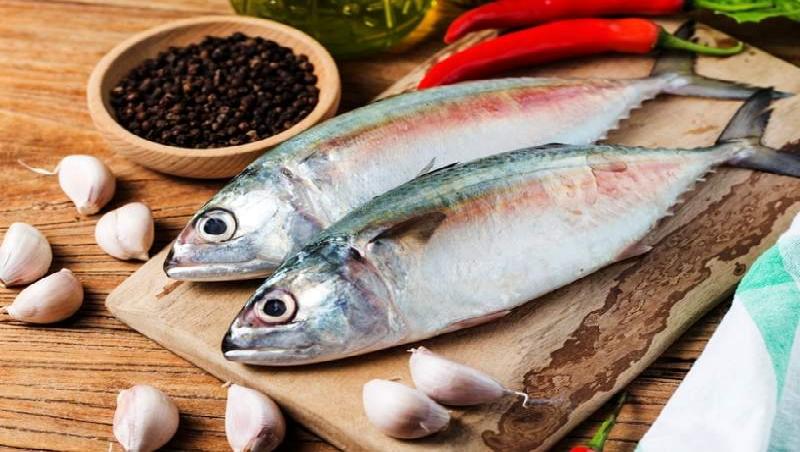 بررسی شرایط صادرات مواد غذایی در بازرگانی الین